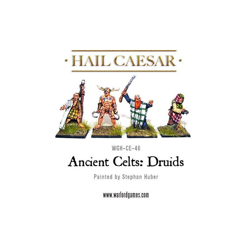 Celt Druids
