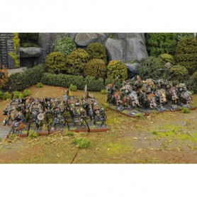 Orcs 1 Player Battleset