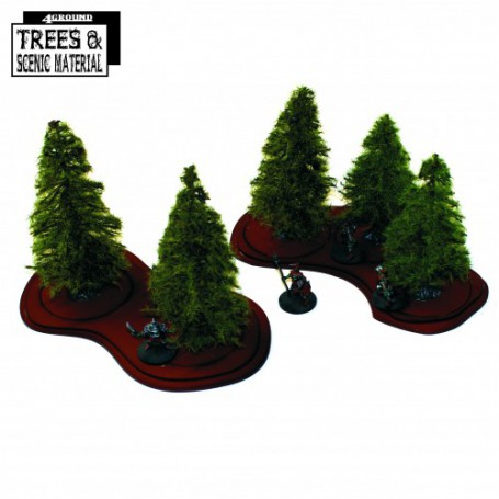 5x 90mm-130mm Young Firs