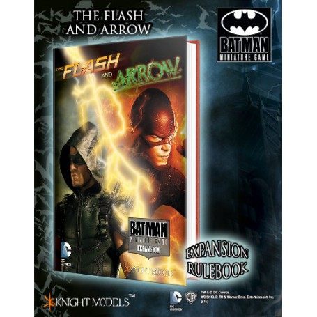 THE FLASH AND THE ARROW avec fig exclusive