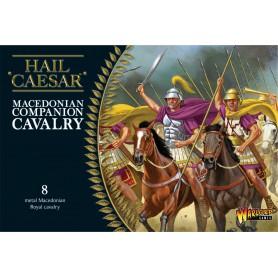 Macedonian Companion Cavalry de Warlord Games, pour le jeu Hail Caesar