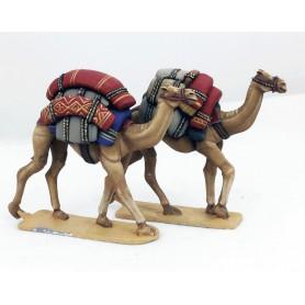SAGA Baggage Camels