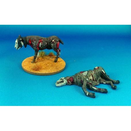 Dead Man'S Hand - Rotten Horses