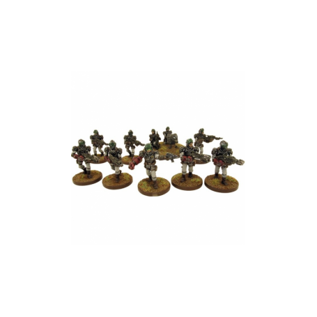 Section de vétérans de la Corporation (10 figurines)