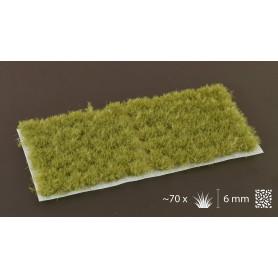 Dense Green (6mm)