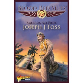 Blood Red Skies Joseph J Foss Wildcat Ace