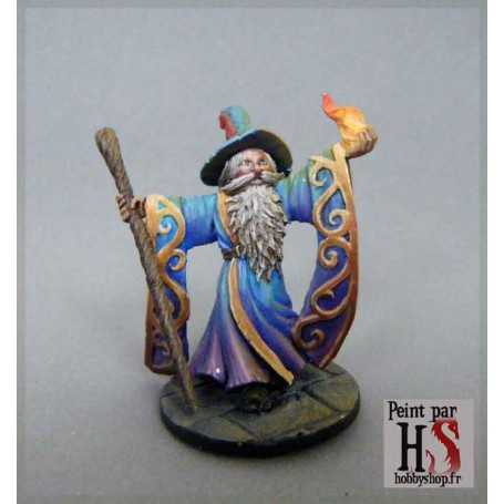 HS Dungeon Serie 1 Sorcier
