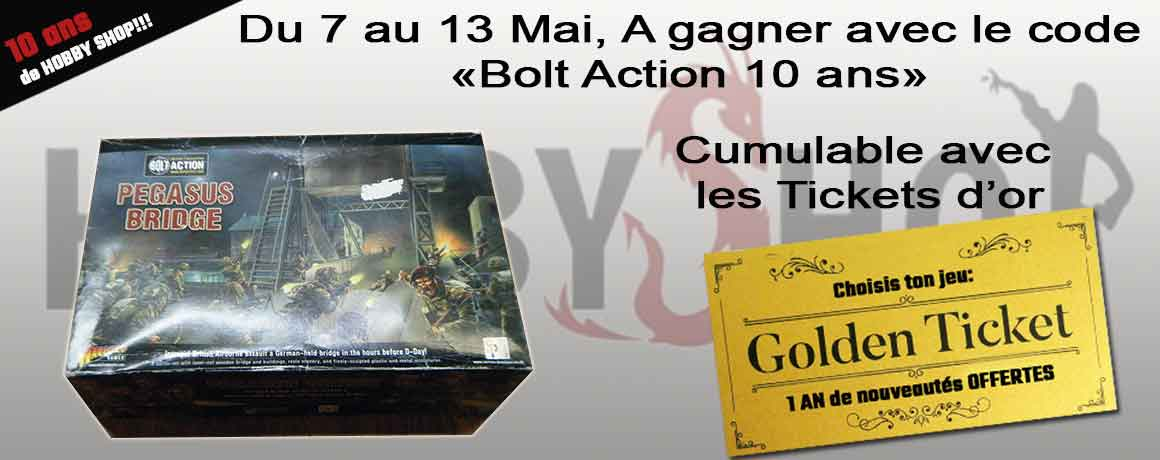 10 ans de Hobby shop Bolt Action